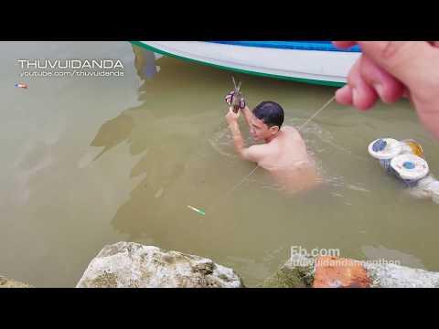 Kịch Tính khi Săn  2 Loại Cá Có Độc ở Đất Mũi Cà Mau l Wild Fish Hunter - Thời lượng: 36:52.
