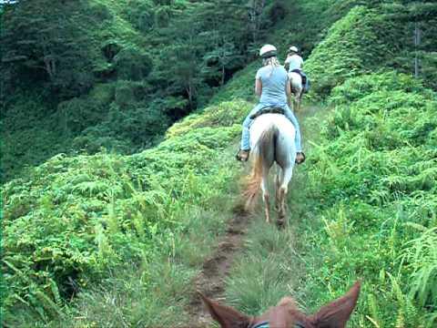 Horseback riding on Kauai by Baconhomes