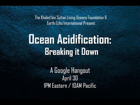 Ocean Acidification: Breaking it Down