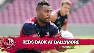 Reds return to Super Rugby training at Ballymore | Super Rugby Video Highlights