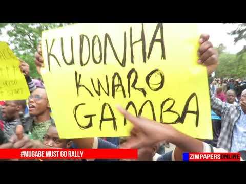 #Mugabe must go rally