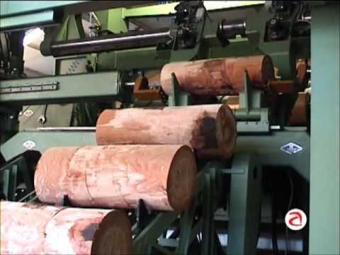 Furnierwerk Bühler Spankorbfabrik