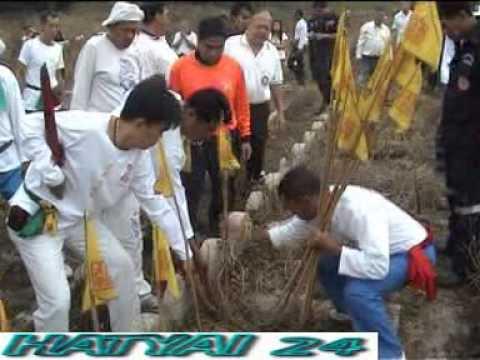 ล้างป่าช้าศพเด็กไร้ญาติกว่า 1,000 ศพ