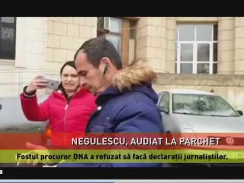 Negulescu, audiat la Parchet