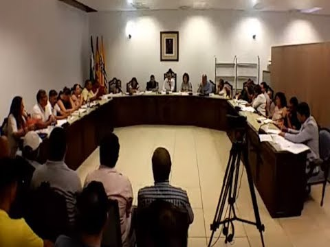 Pleno Orgánico Isla Cristina (11 Julio 2019).