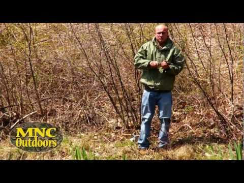 MNC Outdoors – Early Spring Pond Fishing in Haddam Connecticut