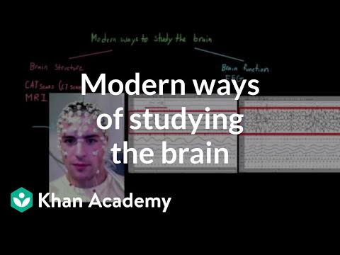 Modern ways of studying the brain video khan academy ccuart Gallery