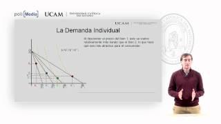 Microeconomía I - La Teoría De La Demanda (1) - Alfonso Rosa García