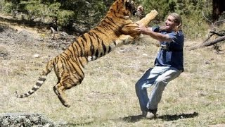 Download Video When Animals Fight Back And Take Revenge On Humans MP3 3GP MP4