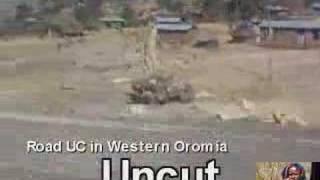 Trip To Western Oromia