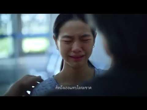 thaihealth ปีใหม่กลับบ้านปลอดภัย