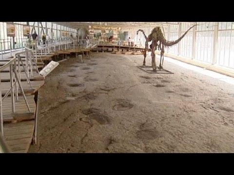 Σπουδαία ανακάλυψη αποτυπωμάτων δεινοσαύρου στη Γερμανία