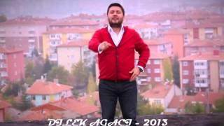 ÖZGÜR KOÇ - DİLEK AĞACI - 2013