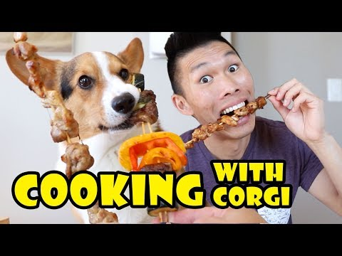 COOKING Kebabs With My CORGI Dog || Life After College: Ep. 635
