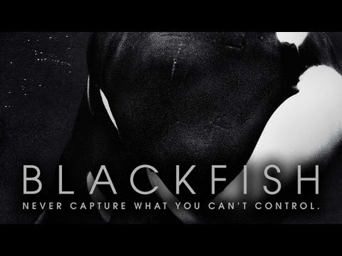 Blackfish // Trailer 2013