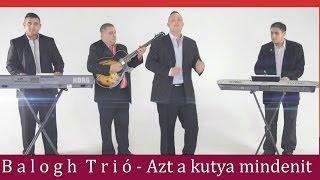 Download Lagu Balogh Trió-Dani-Azt a kutya mindenit Official ZGSTUDIO video Mp3