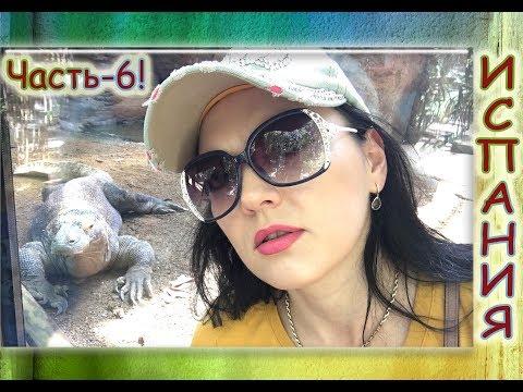 , title : 'Зоопарк Барселоны!Экзотические животные.Отдых в Испании / Часть 6.'