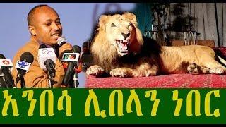 አንበሳ ሊበላን ይችል ነበር | ዶ/ር መጋቢ ሐዲስ ሮዳስ ታደሰ | D/r Megabi Hadise Rodase Tadese | Ethiopia