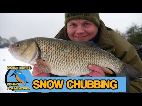 Chub fishing in a winter wonderland (Video 50) (видео)
