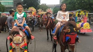 Download Video Naik Kuda di CNI Puri Jakarta Barat MP3 3GP MP4