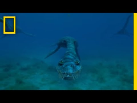 Sea Monsters National Geographic
