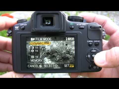 Panasonic Lumix DMC-G10 Review