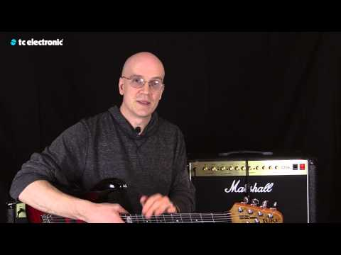 "Devin Townsend uses his ""Goo Soup"" TonePrint for the Flashback Delay"