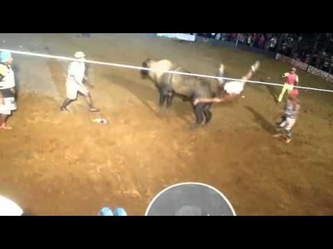 DESAFIO DO BEM EM PORTO DE MOZ-PA COWBOY CATAPORA