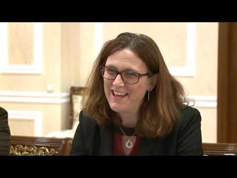 President of the Republic of Moldova held a meeting with European Commissioner for Trade Cecilia Malmström