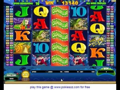 Cashapillar Slots big win with free spins bonus