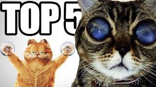 Video 5 Zvierat ktoré vám zaručene vyrazia dych MP3, 3GP, MP4, WEBM, AVI, FLV Agustus 2017