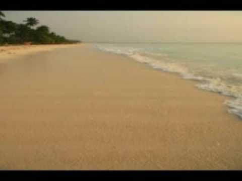 חוף ים -