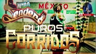 Download Lagu 2018 PUROS CORRIDOS NUEVOS | BANDA SENDERO Mp3