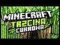 Minecraft: Trzcina cukrowa