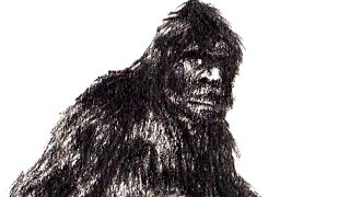 MICHIGAN MONSTERS: Big Foot (VIDEO)