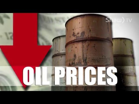 Local Business and Price of Oil