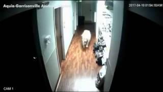 Гудини среди четвероногих: пёс сбежал из больницы для животных