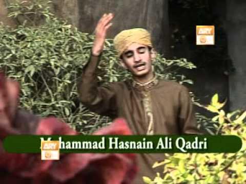 Video Muhammad Hasnain ali qadr Labaik ya nabi.DAT download in MP3, 3GP, MP4, WEBM, AVI, FLV January 2017