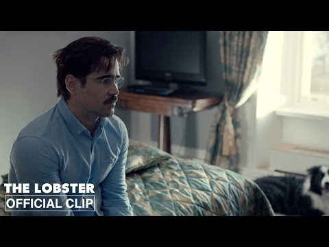 The Lobster (Clip 'Excellent Choice')