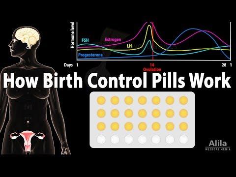 How Birth Control Pills Work, Animation