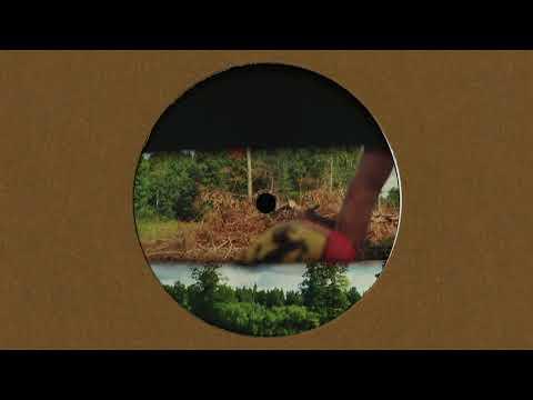 Liem & Eddie Ness - Metronic Disco Fever