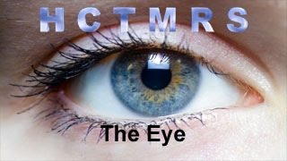 How Creationism Taught Me Real Science 32 The Eye