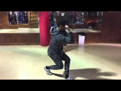 The Black Panther African Martial Arts