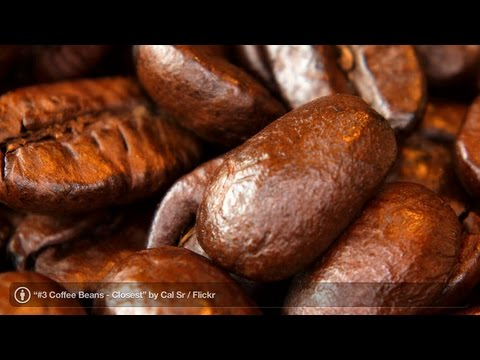 coffee beans - Watch more How to Make the Best Coffee videos: http://www.howcast.com/guides/181-How-to-Make-the-Best-Coffee Subscribe to Howcast's YouTube Channel - http://...