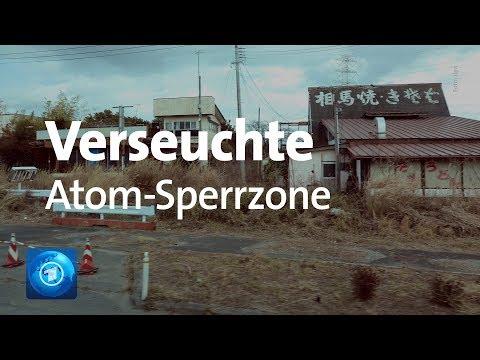 Japan:Fukushima - 8 Jahre nach der Atom-Katastrophe