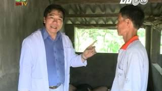 PGS.TS Lê Văn Năm nói về bệnh Tai xanh ở lợn