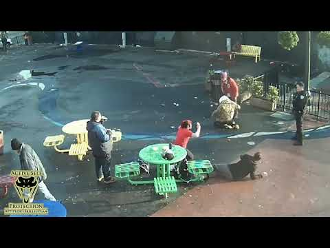 The Park Fight That Keeps On Giving