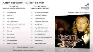 Stefan Hrusca - Flori De Mar (16/23) [Craciunul Cu Hrusca]