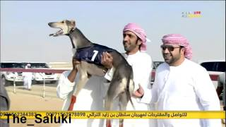 Video نهائي بطولة سلطان بن زايد  -سويحان- شوط الذيخه MP3, 3GP, MP4, WEBM, AVI, FLV Februari 2019