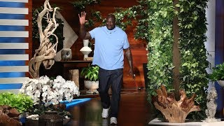 Video Shaq's Babysitting Gig Led to His Google Riches MP3, 3GP, MP4, WEBM, AVI, FLV September 2018
